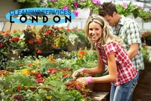 Garden Services London